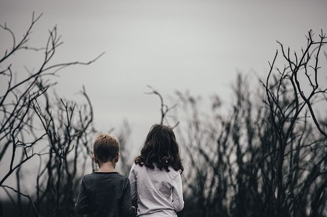 kids in withered forest