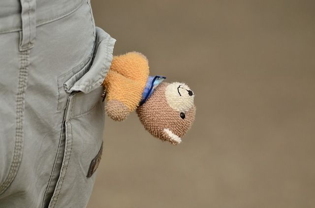 stuffed bear in pocket