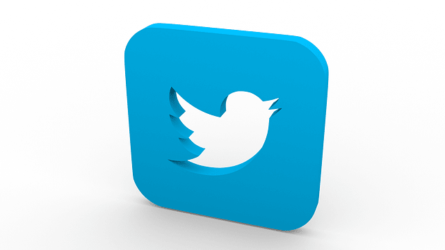 picture of twitter icon in 3d